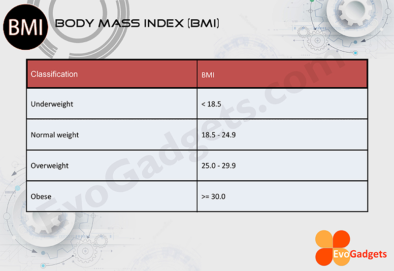 what is more important body fat percentage or bmi